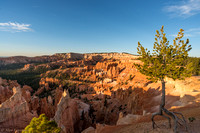 Sunrise - Sunrise Point - Bryce Canyon