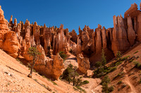 Bryce Canyon View #4