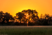 African Sunset 2 - Chief's Camp - Botswana